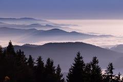 Brouillard dans la forêt noire, Allemagne Images stock