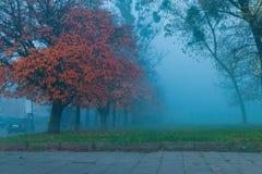 Brouillard dans la ville de Danzig Photographie stock