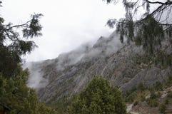 Brouillard dans les montagnes Photo libre de droits