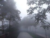 Brouillard de février Image libre de droits