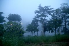 Brouillard de Khaokho Brouillard de mer Image libre de droits
