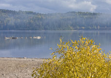 brouillard de lac d'automne plus de Photos stock