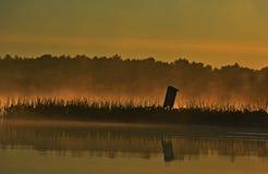 Brouillard de lever de soleil Photo stock