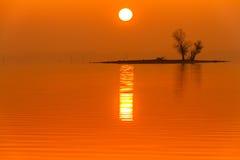 Brouillard de lever de soleil sur Truman Lake avec une île Image stock