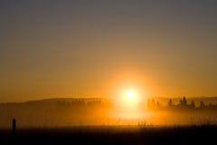 Brouillard de matin Image stock
