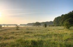 Brouillard de matin Photo libre de droits