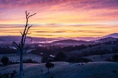 Brouillard de matin dans Goulburn River Valley dans Victoria, Australie Photographie stock libre de droits