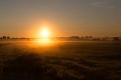 Brouillard de matin dans le domaine Photo stock
