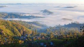 Brouillard de matin dans le paysage aérien de village de matin, timelapse de Sri Lanka banque de vidéos