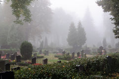 Brouillard de matin dans un cimetière Image stock