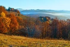 Brouillard de matin en automne carpathien images libres de droits