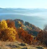 Brouillard de matin en automne carpathien photographie stock libre de droits