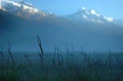 Brouillard de matin en montagnes. Photo stock
