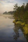 Brouillard de matin en Suède Photographie stock libre de droits