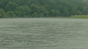 Brouillard de matin sur la rivière du Dniestr banque de vidéos