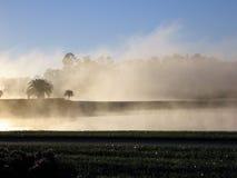 Brouillard de matin sur le cours images libres de droits