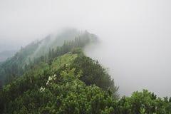 Brouillard de montagne photos stock