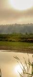 Brouillard de Nemunas Image stock
