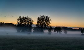 Brouillard de soirée dans le domaine européen Images libres de droits