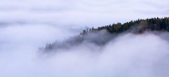 Brouillard et île de matin Image libre de droits
