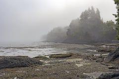 Brouillard et marée basse de matin sur la côte image stock