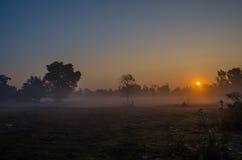 Brouillard et soleil Photos stock
