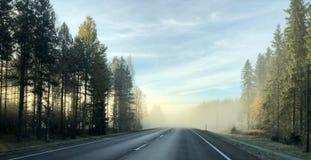 Brouillard féerique de matin sur la route image libre de droits