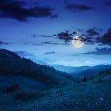 Brouillard froid sur la forêt en montagnes la nuit photos libres de droits