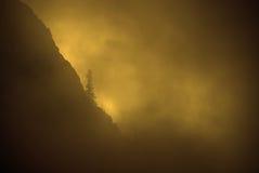 Brouillard, lumière du soleil chaude et pin sur le flanc de montagne rocailleux images libres de droits