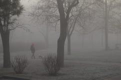 Brouillard, matin, un chien avec la fille Photographie stock libre de droits