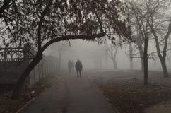 Brouillard, mystère, matin Images libres de droits