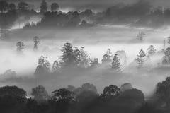 Brouillard mystérieux au-dessus d'horizon de ville Photos stock