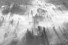 Brouillard mystérieux au-dessus d'horizon de ville Images stock