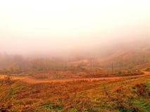 Brouillard pendant l'automne en retard et le temps sombre images stock