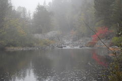 Brouillard pendant le matin Photo libre de droits