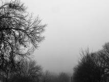 brouillard pendant le matin photographie stock