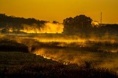 Brouillard rougeoyant pendant le lever de soleil images stock