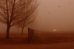 Brouillard silencieux. Photo libre de droits