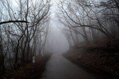 Brouillard sur la route Pyatigorsk, Russie photos libres de droits