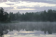 Brouillard sur le lac Images libres de droits