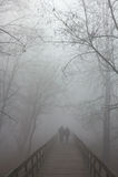 Brouillard sur le pont Photo libre de droits