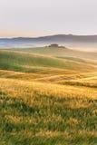 Brouillard toscan au soleil de champs, Italie Photographie stock