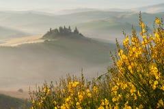 Brouillard toscan sur le champ rustique en soleil, Italie Photos libres de droits