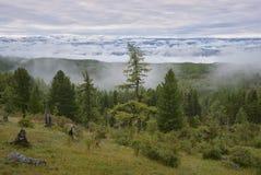 Brouillard vers le bas des montagnes Photographie stock libre de droits