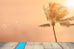 Brouillez la plage tropicale de coucher du soleil avec le fond d'abrégé sur palmier Photo stock
