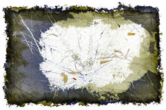 brouillons à trois dimensions et cadre grunge Images libres de droits