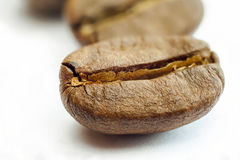 Broun coffee beans isolated on white background shallow depth of. Field royalty free stock image