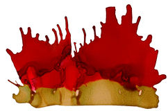 Broun red paint splash on white Royalty Free Stock Image