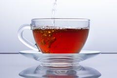 Brouw thee, in een transparante kop thee wordt gegoten, wordt de zwarte thee gegoten, theekransje royalty-vrije stock afbeelding
