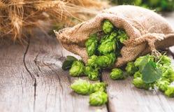 brouwerij Hoopkegels en van tarweoren close-up De ingrediënten van de bierproductie op houten gebarsten lijst stock afbeeldingen